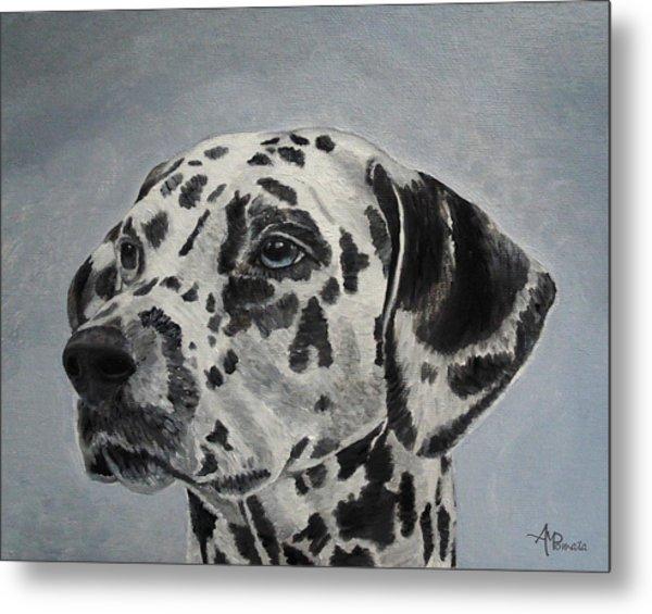 Dalmatian Portrait Metal Print