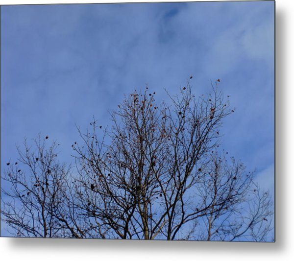 Dancing With The Clouds 2 Metal Print by Trilby Cole
