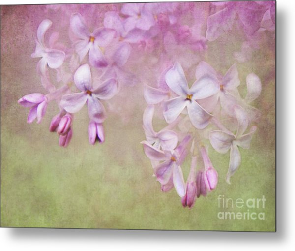 Dangle Me Lilac Metal Print