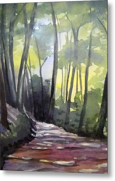 Dappled Dirt Road Metal Print