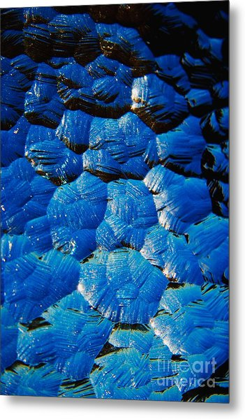 Dark Blue Metal Print by Hideaki Sakurai