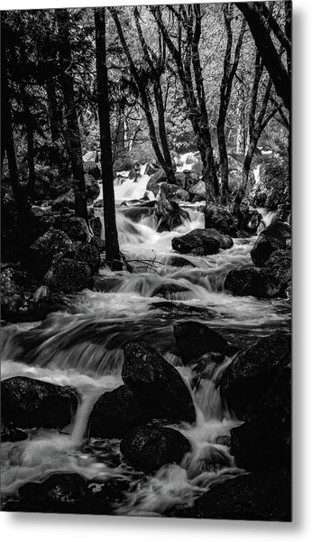 Dark Forest Bright Water Metal Print