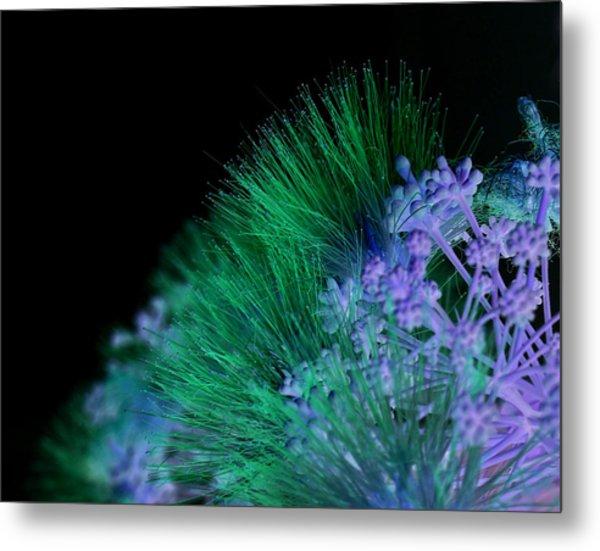 Dark Mimosa Metal Print by James Granberry