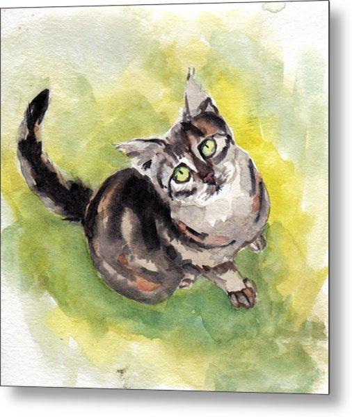 Dark Torbie Metal Print