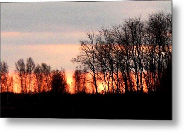 Dark Trees At Sunset Wc  Metal Print by Lyle Crump