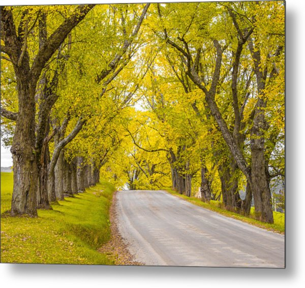 Darling Hill Autumn Metal Print