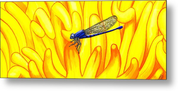Darning Needle Metal Print by Catherine G McElroy