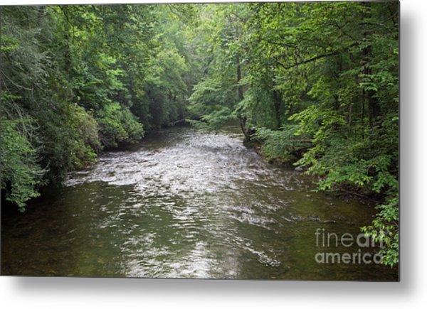 Davidson River In North Carolina Metal Print