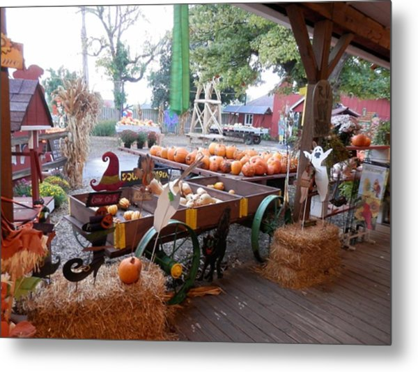 Day At The Pumkin Farm Metal Print