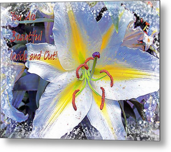 Day Lily Beauty Metal Print