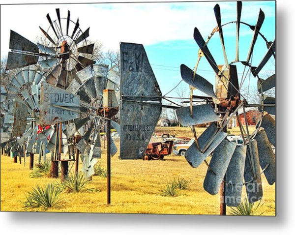 Daylight In The Garden Of Rust And Metal Metal Print