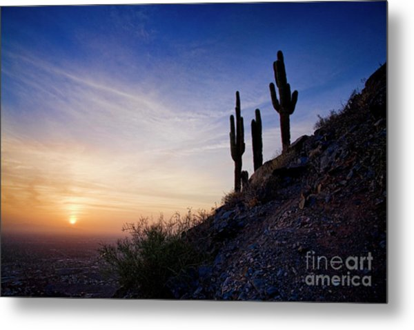 Days End In The Desert Metal Print