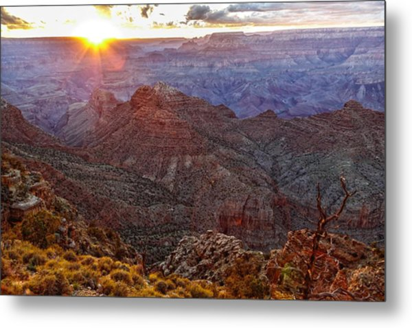 Days Ending Light Metal Print
