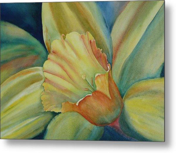 Dazzling Daffodil Metal Print