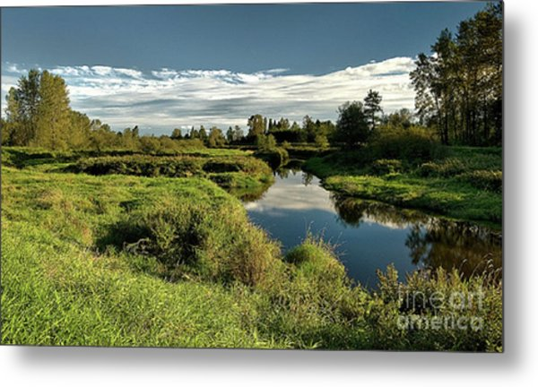 De Boville Slough At Pitt River Dike Metal Print