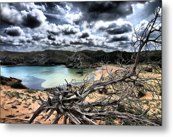 Dead Nature Under Stormy Light In Mediterranean Beach Metal Print