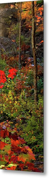 6 Of 6 Dead River Falls  Marquette Michigan Section Metal Print