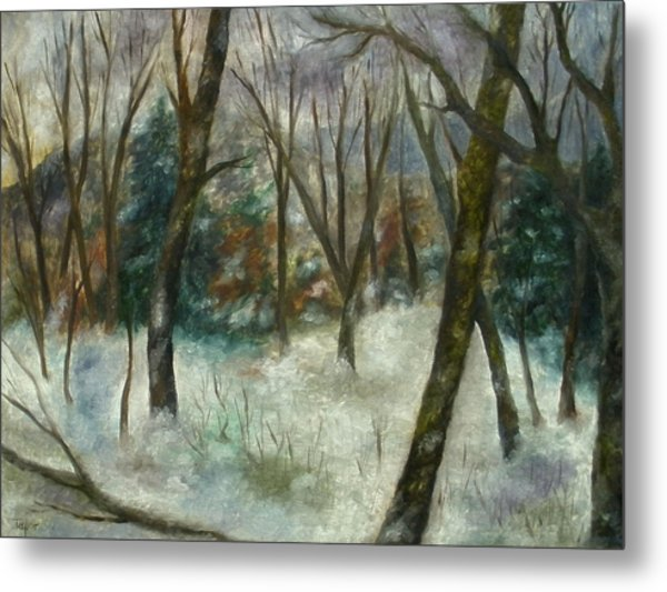 December On Cooper Hill Metal Print