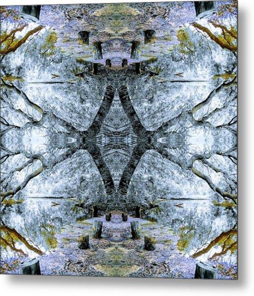 Deciduous Dimensions Metal Print