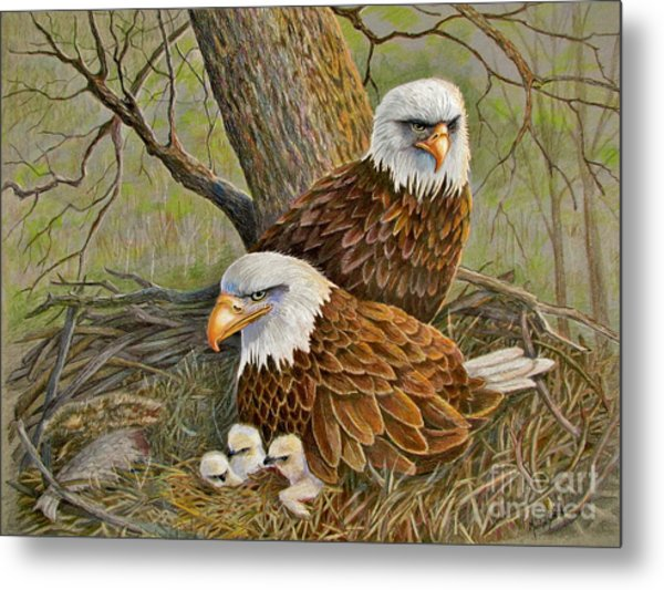 Decorah Eagle Family Metal Print