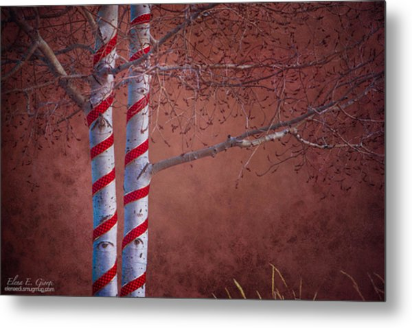 Decorated Aspens Metal Print