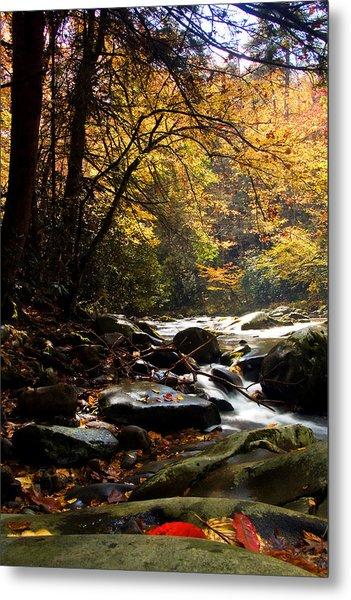 Deep Creek Mountain Stream Metal Print