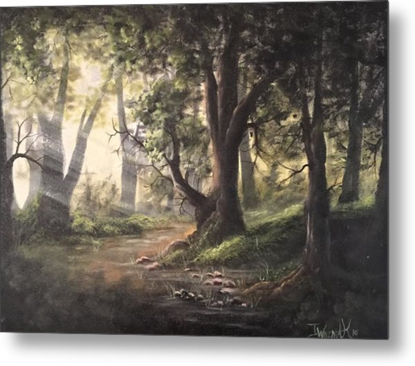 Deep Forest Rays  Metal Print