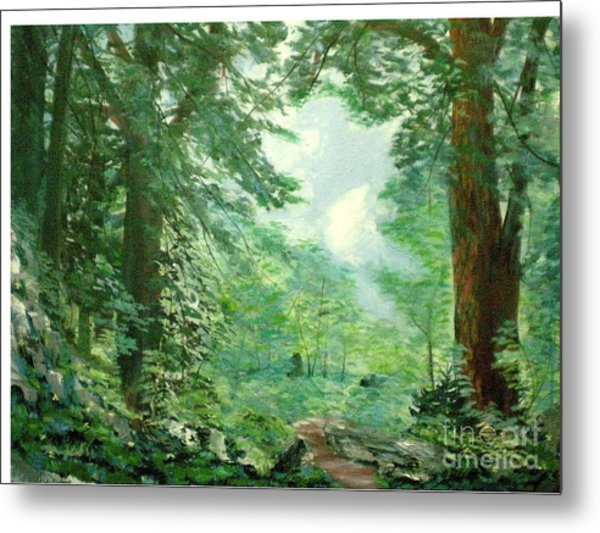 Deep Woods Path Metal Print by Hal Newhouser