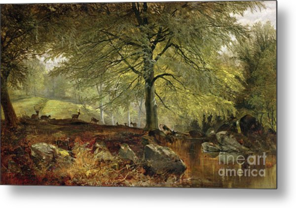 Deer In A Wood Metal Print