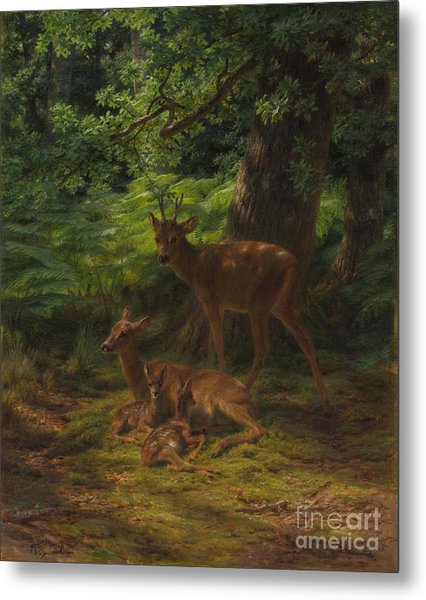 Deer In Repose Metal Print