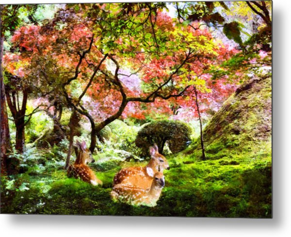 Deer Relaxing In A Meadow Metal Print