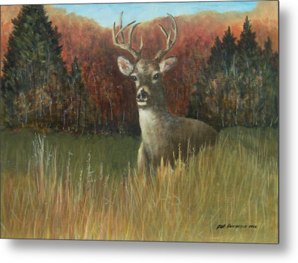 Deer Season Metal Print by Robert Harrington