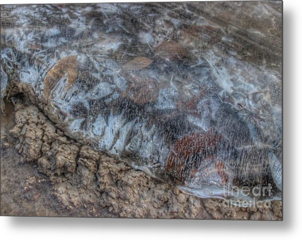 Delaware River Ice With Leaves Metal Print