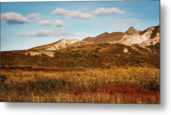 Denali National Park Metal Print