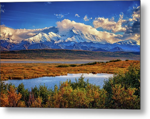 Denali, The High One Metal Print