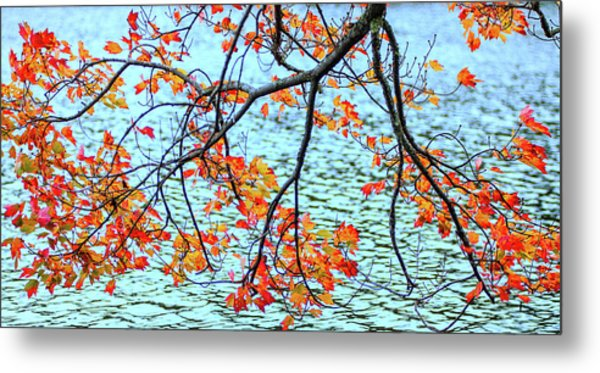 Metal Print featuring the photograph der Oktober by Expressive Landscapes Fine Art Photography by Thom