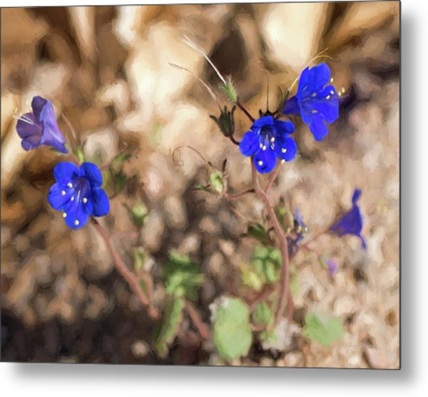 Metal Print featuring the photograph Desert Blue Bells At Joshua Tree National Park by Penny Lisowski