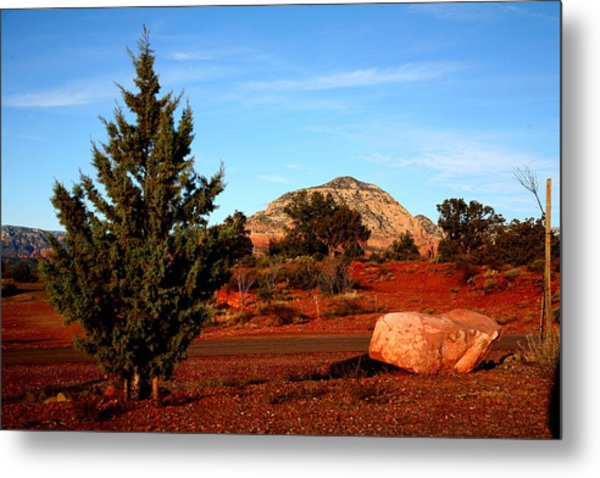 Desert Friends Metal Print by Jennilyn Benedicto