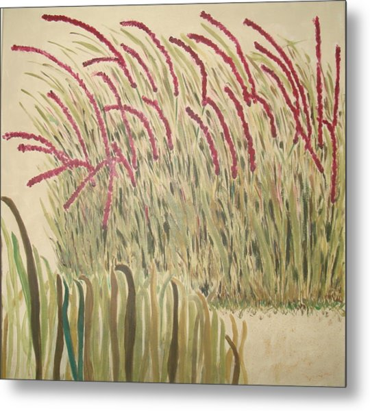Desert Grasses Metal Print by Wendy Peat