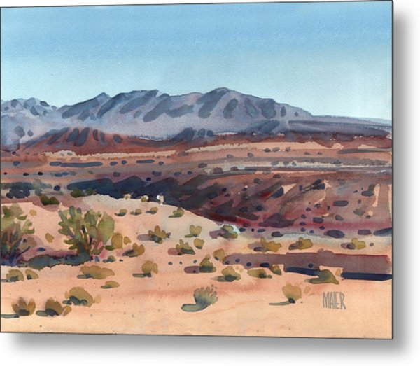 Desert In New Mexico Metal Print
