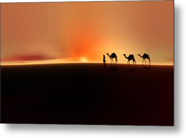Metal Print featuring the photograph Desert Mirage by Valerie Anne Kelly