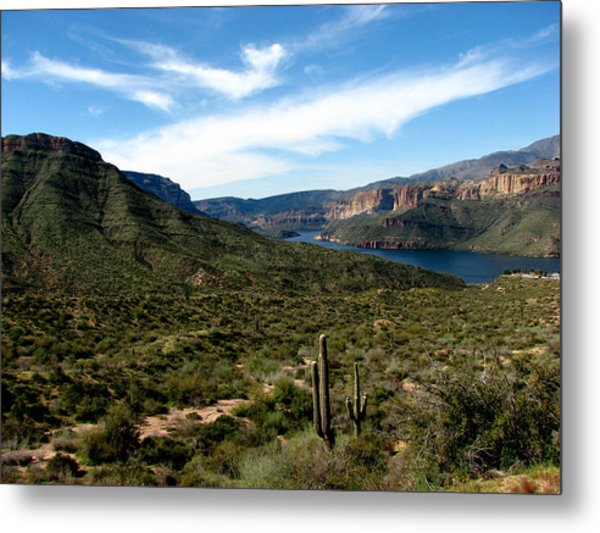 Desert Oasis Metal Print by Andrea Arnold