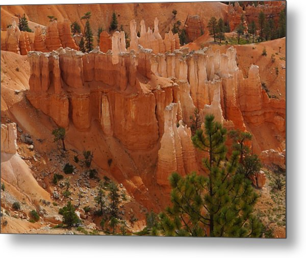 Metal Print featuring the photograph Desert Sentinels by Broderick Delaney