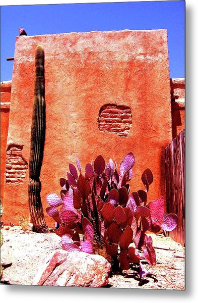 Desert Solace Metal Print
