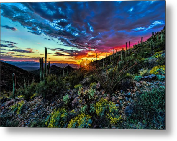 Desert Sunset Hdr 01 Metal Print