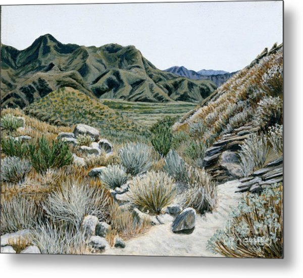 Desert Trail Metal Print