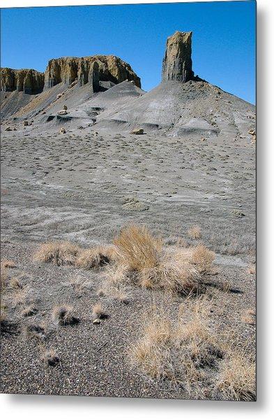 Desert Vista Metal Print