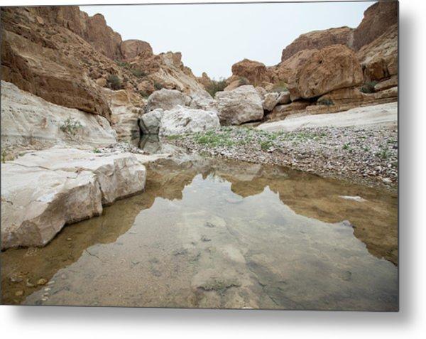 Desert Water Metal Print