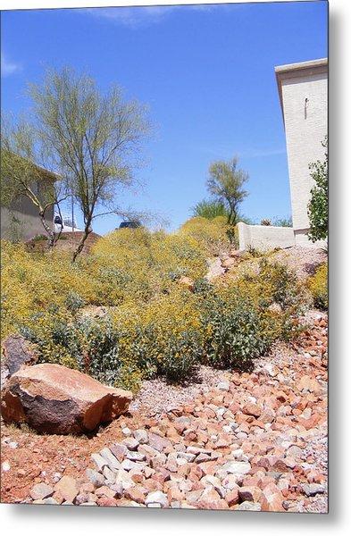 Desert Yard Metal Print