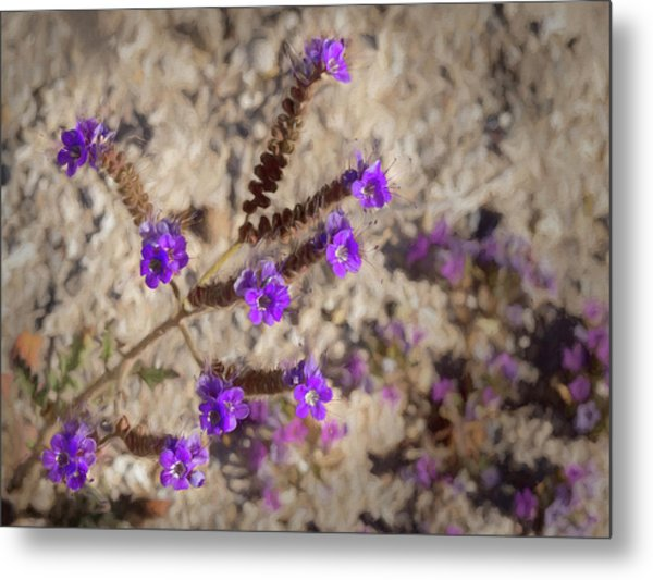 Metal Print featuring the photograph Desert Zig Zag Purple Flower by Penny Lisowski